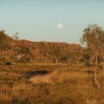 Devonian reefs in the Kimberley