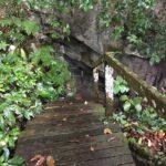 Mulu caves