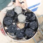 Coring black ooze in the Peel-Harvey Estuary
